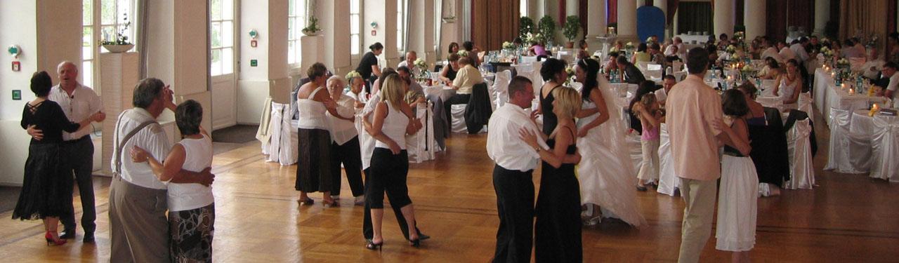 Tanz- Und Unterhaltungsband Audiom Hochzeitsband Party Musik